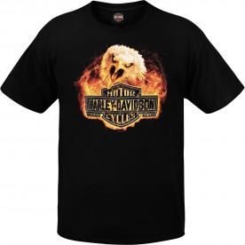 Harley-Davidson Men's Graphic T-Shirt - Camp Foster | Fire Screech