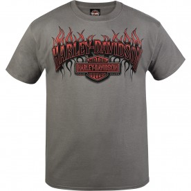 Harley-Davidson Military - Men's Smoke Grey Short-Sleeve Flames Graphic T-Shirt - NAS Sigonella | Red Heat